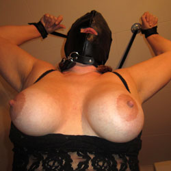 Tied Up Showing Big Tits - Artistic Nude, Big Tits, Bondage, Huge Tits, Large Breasts, Perfect Tits, See Through, Showing Tits, Sexy Boobs , Nude, Big Tits, Tied Up, See Through