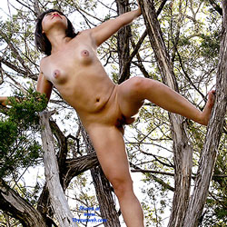 Naked Tree Climber - Brunette Hair, Exhibitionist, Full Nude, Naked Outdoors, Nipples, Nude In Nature, Nude In Public, Perfect Tits, Shaved Pussy, Spread Legs, Naked Girl, Sexy Girl, Sexy Legs , Naked, Nude, Tree Climber, Nature