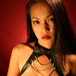 Handcuffs Leather And Tape