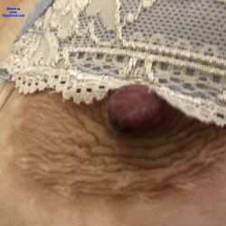 Great Tits - Mature, Amateur