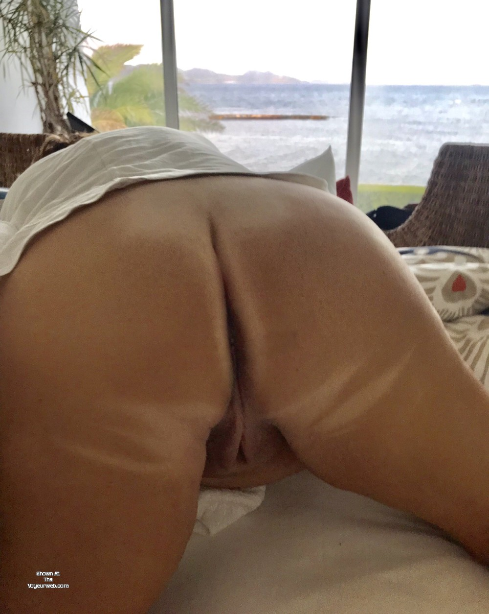 Pic #1My wife's ass - my_mature_wife