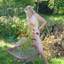 Overview Of The Flower Garden - Nude Girls, Blonde, Outdoors, Amateur