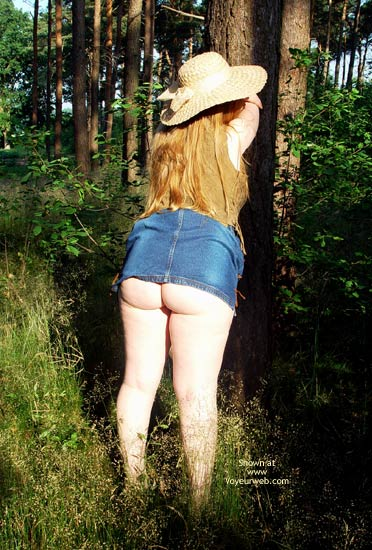 Pic #1 Gina Deen 10 Sunny Morning In The Woods I