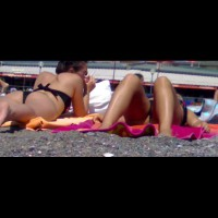 The Asses I Saw , Just A Report Of This Summer In Italy And North Africa