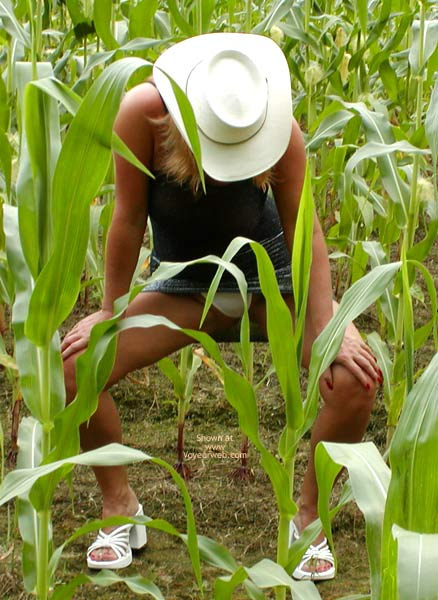 Pic #1 Soo Hot N A Corn Field