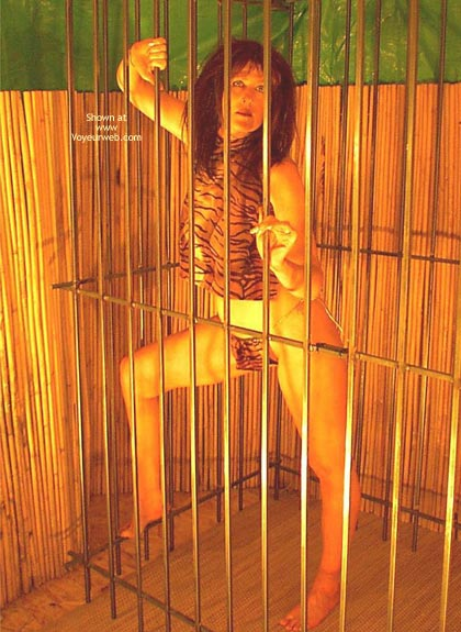 Pic #1 Caged Desire  Invogue