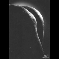 Closeup - Black And White, Close Up, Rear View, Wet , Closeup, Rear Shot, Wet Skin, Black And White, Black And White Ass In Shadow