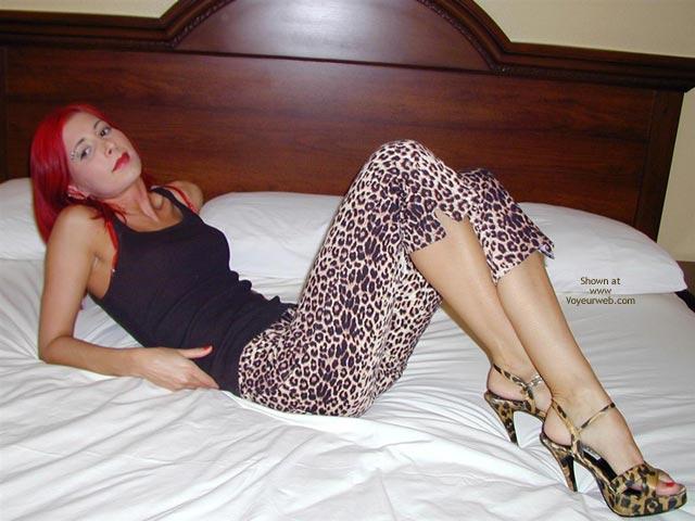 Pic #1 Jayna Punk Rock Leopard Polka