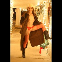 Dede's Christmas Flashing 2