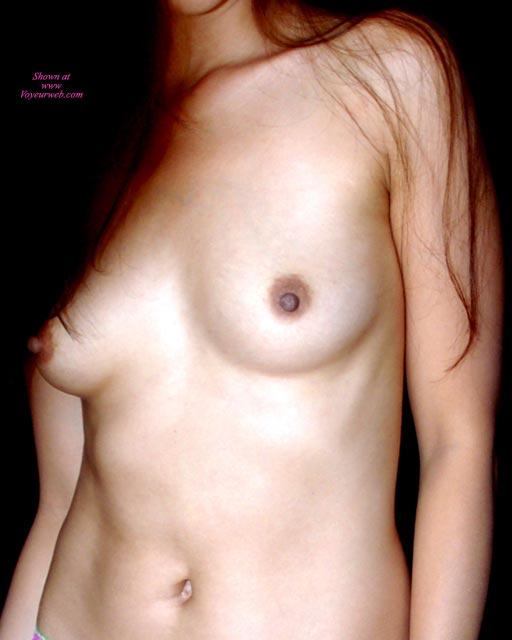 Female Torso In Sepia - Brown Hair, Erect Nipples, Long Hair, Small Breasts , Smooth Skin, No Face, Smaller Tits, Dark Areolas