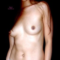 Female Torso In Sepia - Brown Hair, Erect Nipples, Long Hair, Small Breasts , Smooth Skin, No Face, Smaller Tits, Dark Areolas