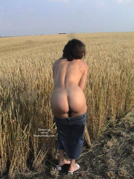 Pic #1 Farmer's Wife Goes to Wheat Field 2