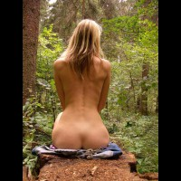 Sitting Upright Showing Perfect Hourglass - Naked Girl, Nude Amateur , Ass View Sitting In Woods, Green Forest, Sexy Curves, View From Behind, Nice And Natural, Nude Back, Perfect Back, Wood Nymph, Seated, Seated From Behind In Forest, Naked On Tree Stump, Nude In The Woods, Back To Nature
