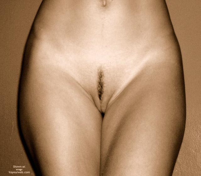 Sepia Frontal Teaser - Landing Strip , Sepia Frontal Teaser, Landing Strip In Sepia, Little Hair Pussy, Artistic Nudes, Landing Strip