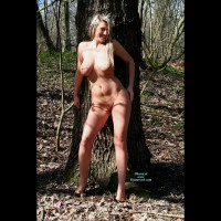 Bound In The Woods