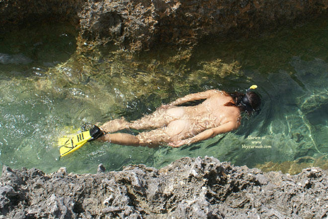 Nude Snorkelling - Naked Girl, Nude Amateur , Skinny Dipping, In The Water, Nude  Swimming, Nude Outdoors, Snorkling Nude, Nude In Water, Sunny Bum, Naked Diving, Back To The Camera