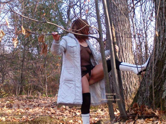 Pic #1 Venus In The Forest