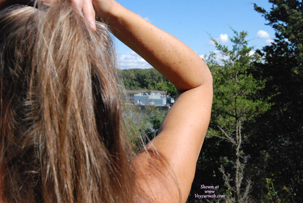 Pic #1Hudson River Lark
