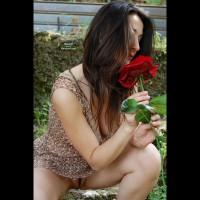 Tira's Rose