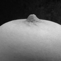 Nipple In Black&white , Close-up Tit, Close-up Of Breast, Black And White Photo, Hard Nipple, Nice Nipple, Really Hard Nipple, Full Breast