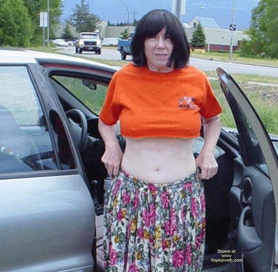 Pic #1 Tigress Takes A Drive 2