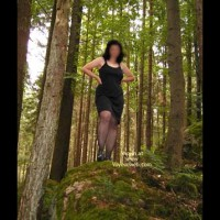 Carolina In The Wood  Im Wald